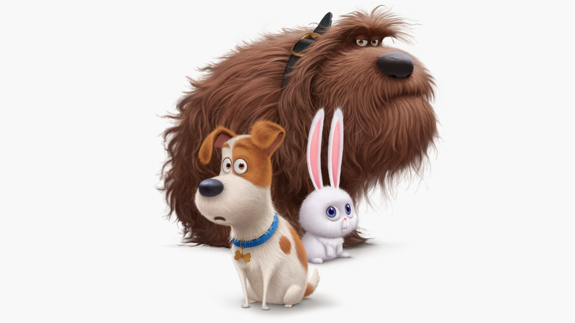The Secret Life Of Pets HD Wallpaper