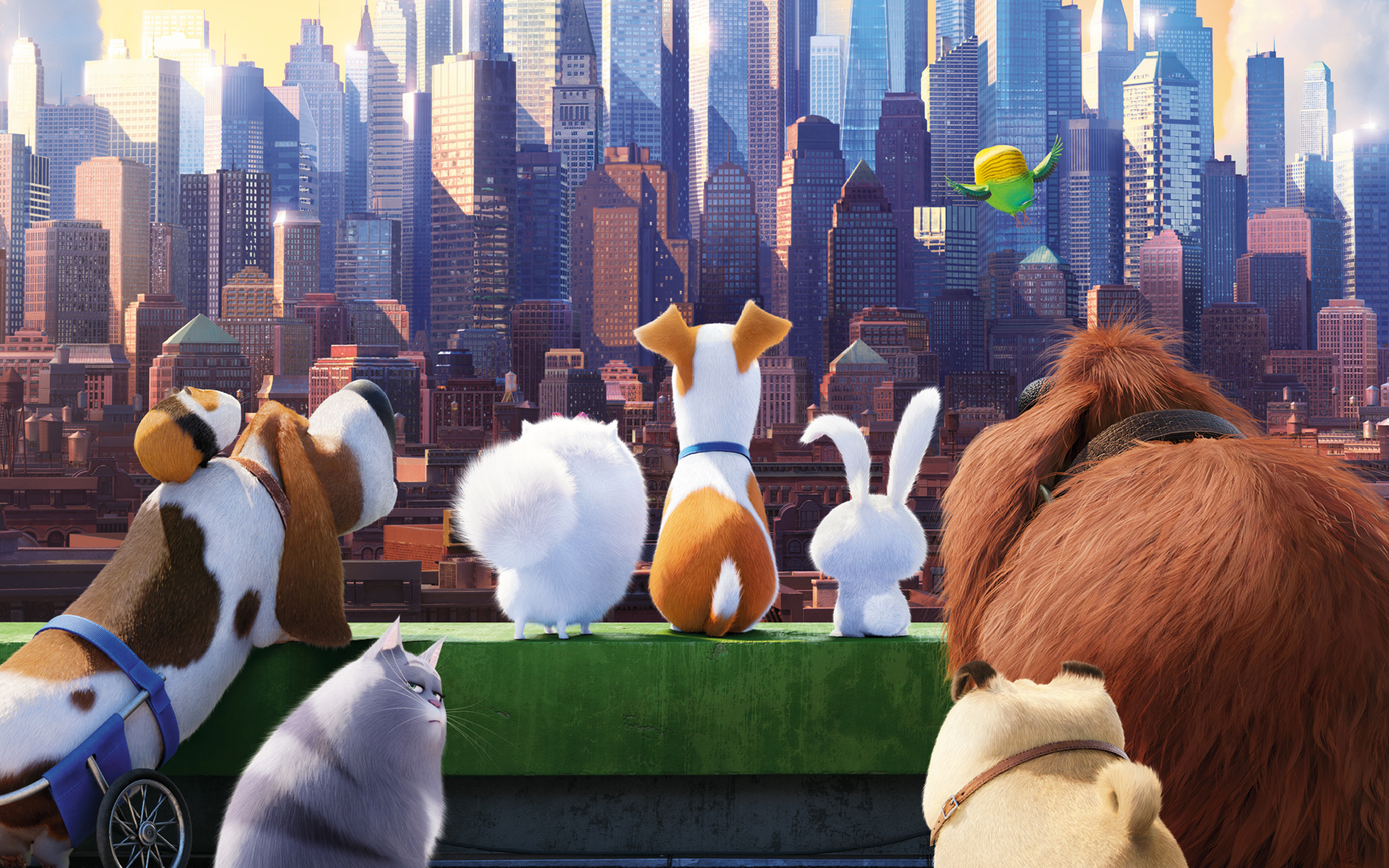 The Secret Life Of Pets High Definition Wallpapers