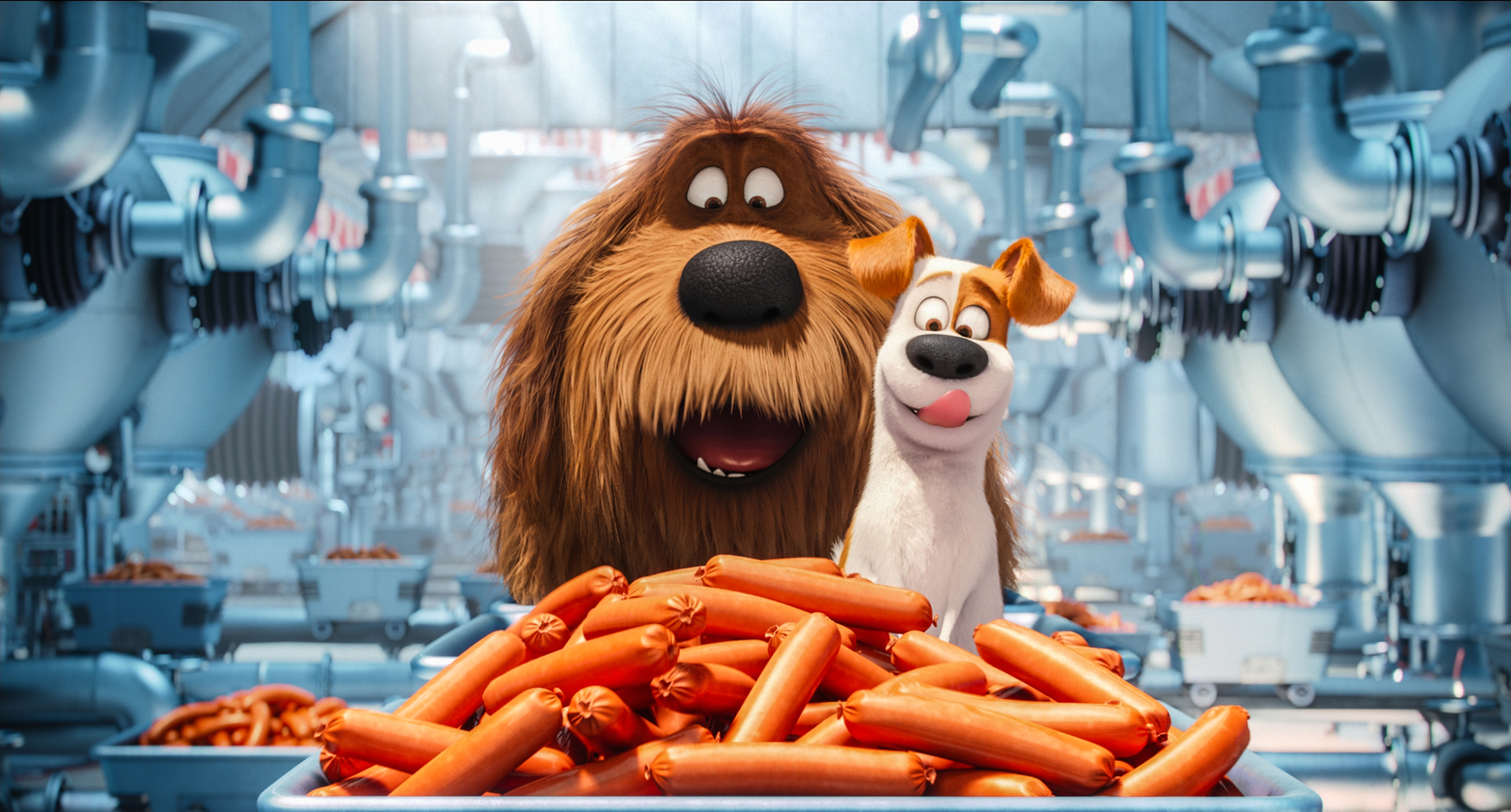 The Secret Life Of Pets Pictures