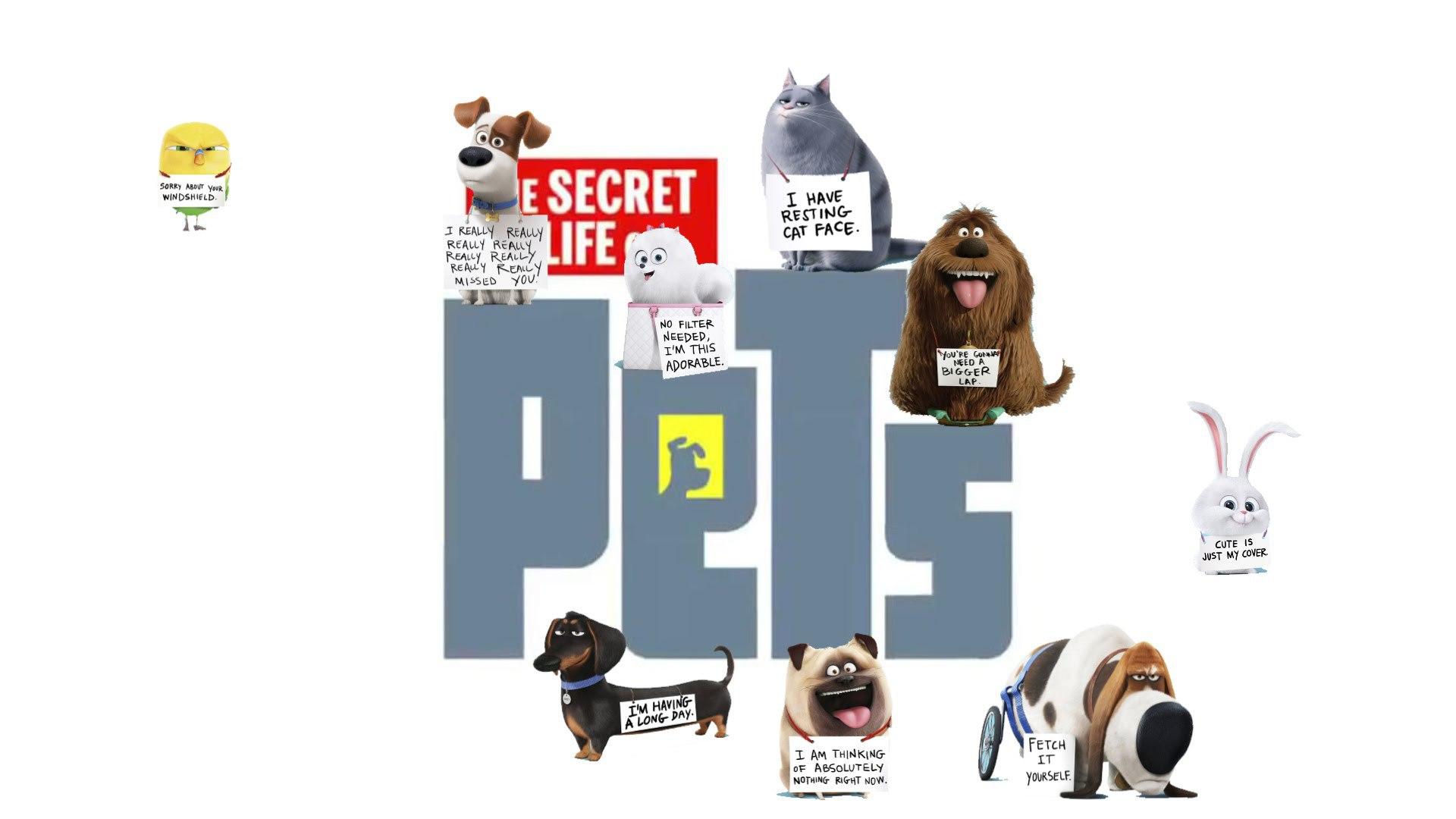 The Secret Life Of Pets Wallpaper