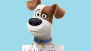 The Secret Life Of Pets Widescreen