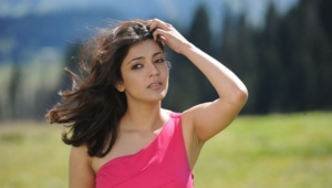 Kajal Aggarwal Wallpapers And Backgrounds