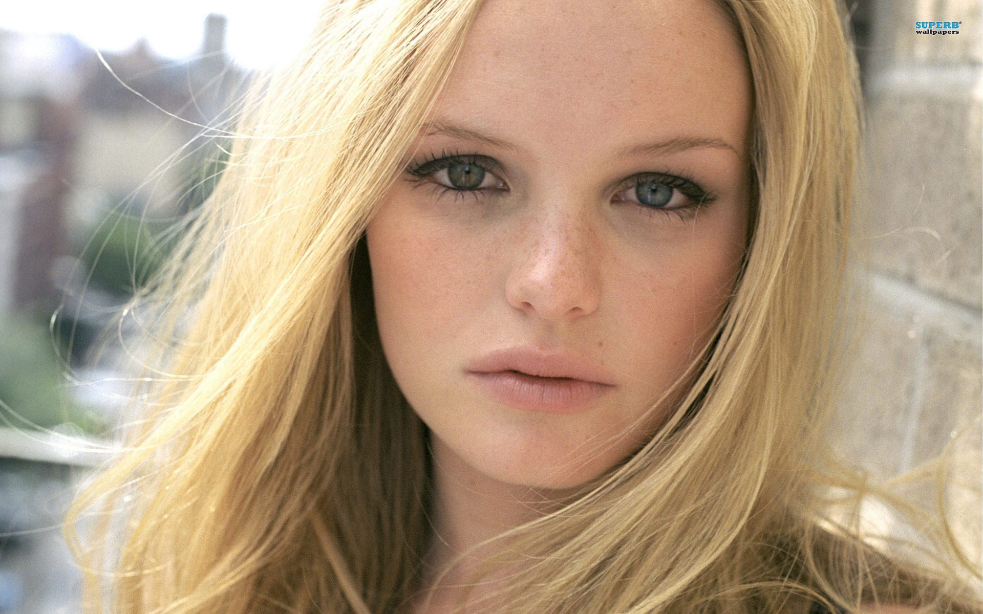 Kate Bosworth Desktop