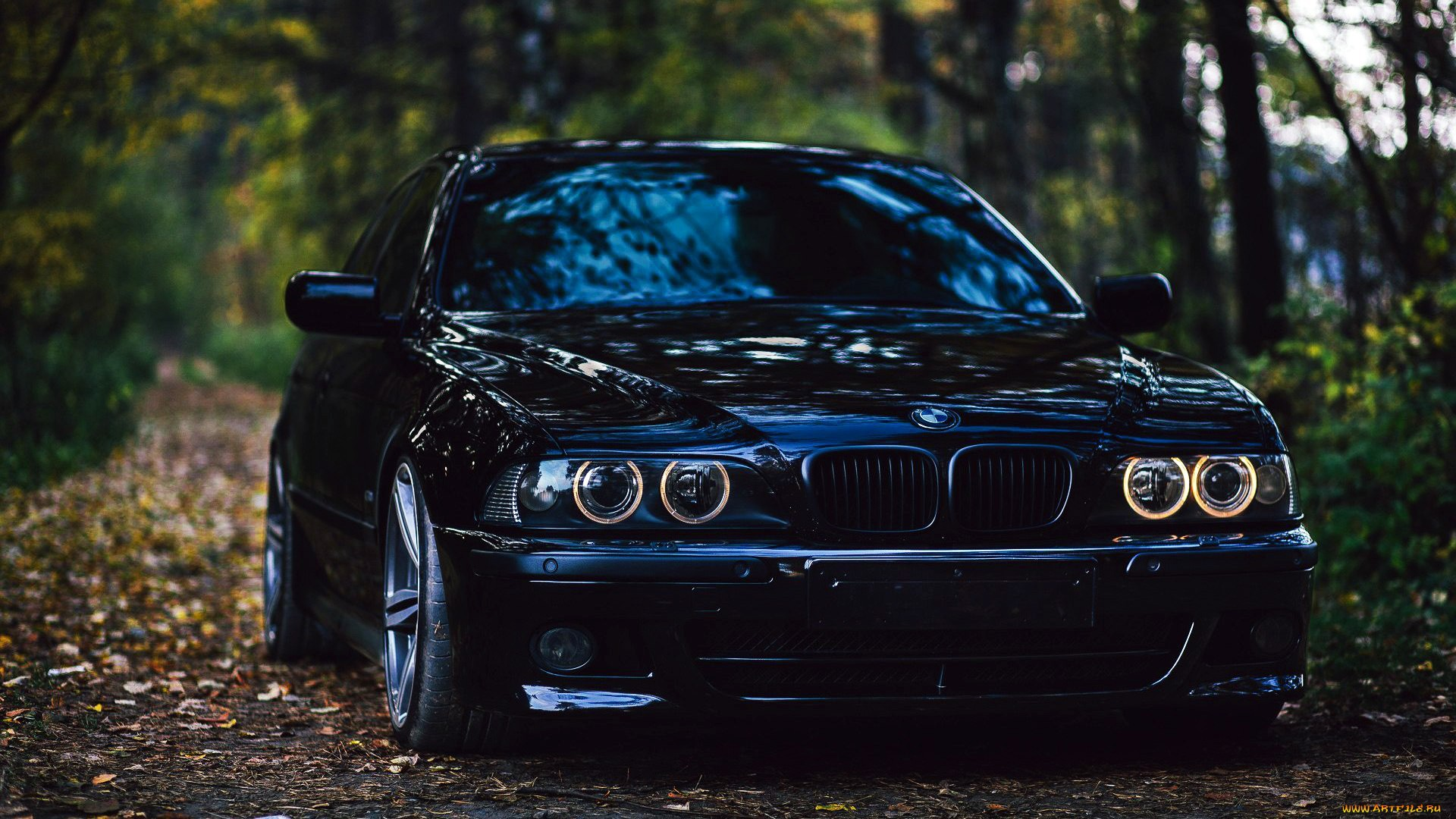 Pictures Of Bmw E39