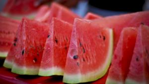 Watermelon Photos