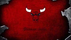 Chicago Bulls Pictures