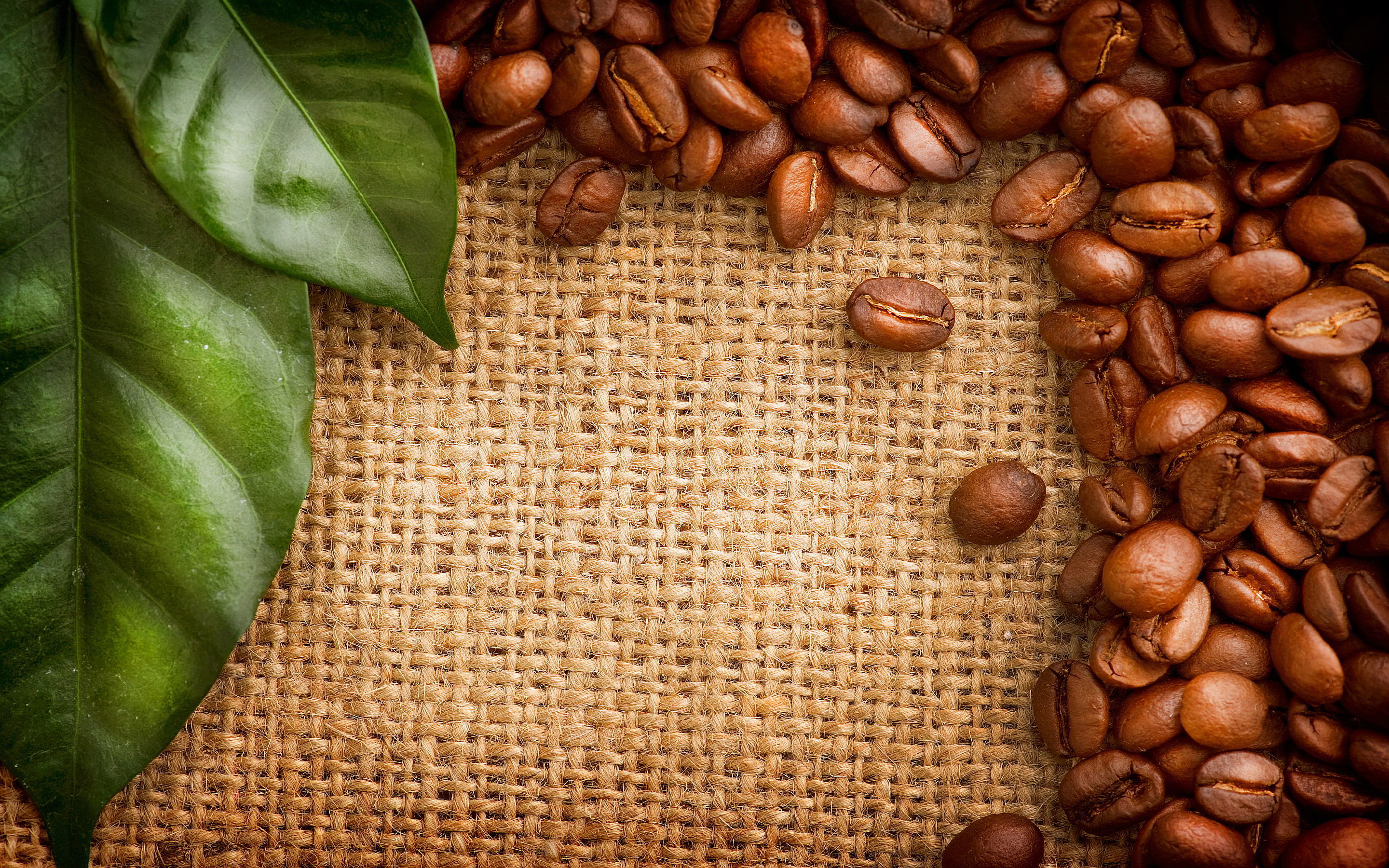 Coffee Beans HD Background