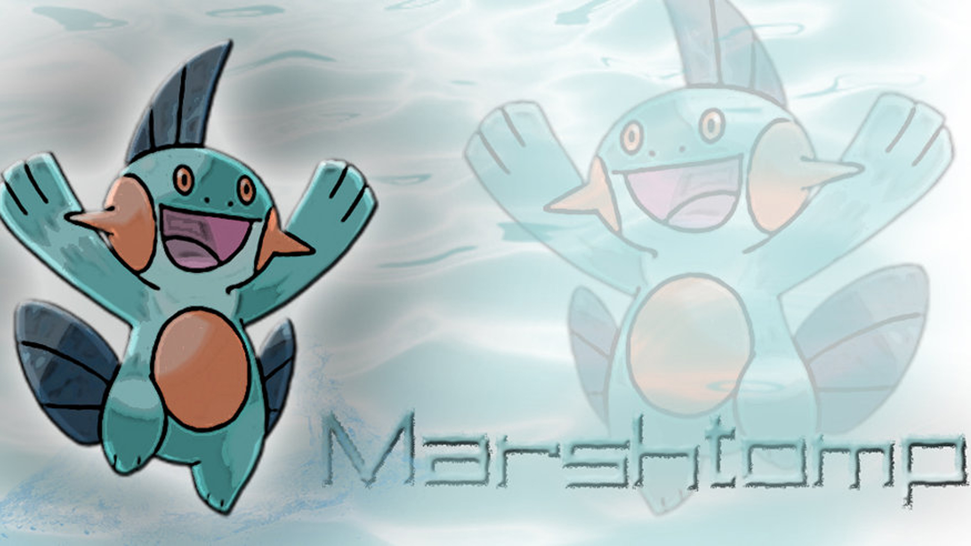 Marshtomp Background