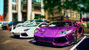 Purple Lamborghini 9797