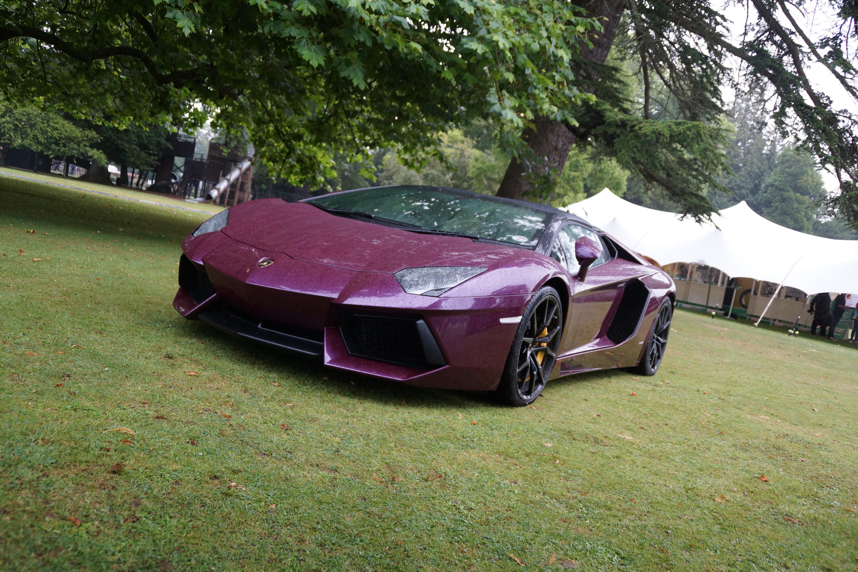 Purple Lamborghini Iphone Hd Wallpaper