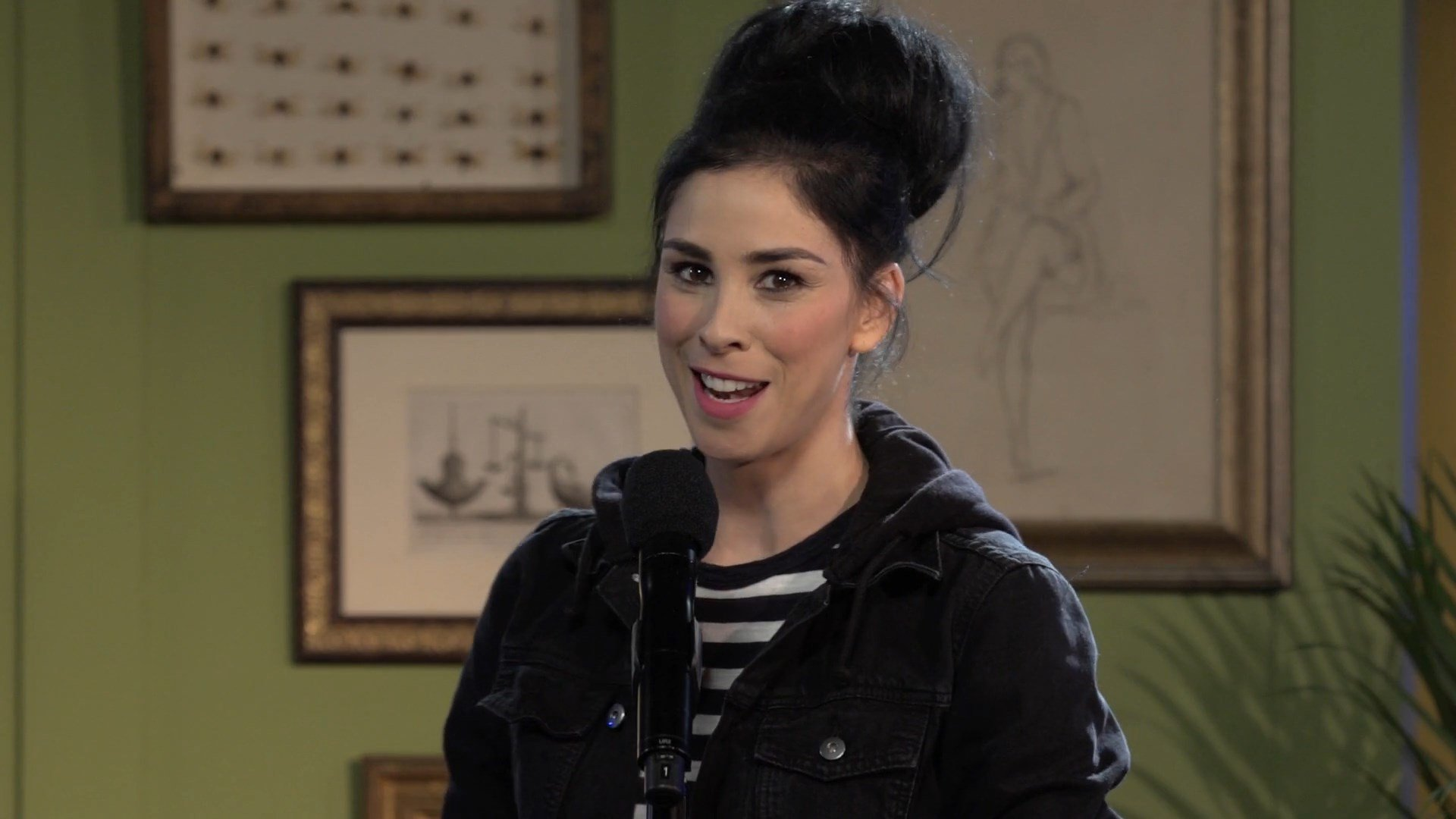 Sarah Silverman High Definition Wallpapers