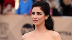 Sarah Silverman High Quality Wallpapers