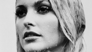 Sharon Tate Wallpaper