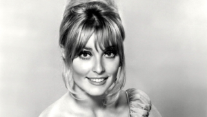 Sharon Tate Wallpapers