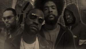 The Roots Hd Wallpaper
