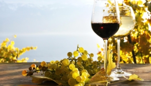 Wine High Definition Wallpapers