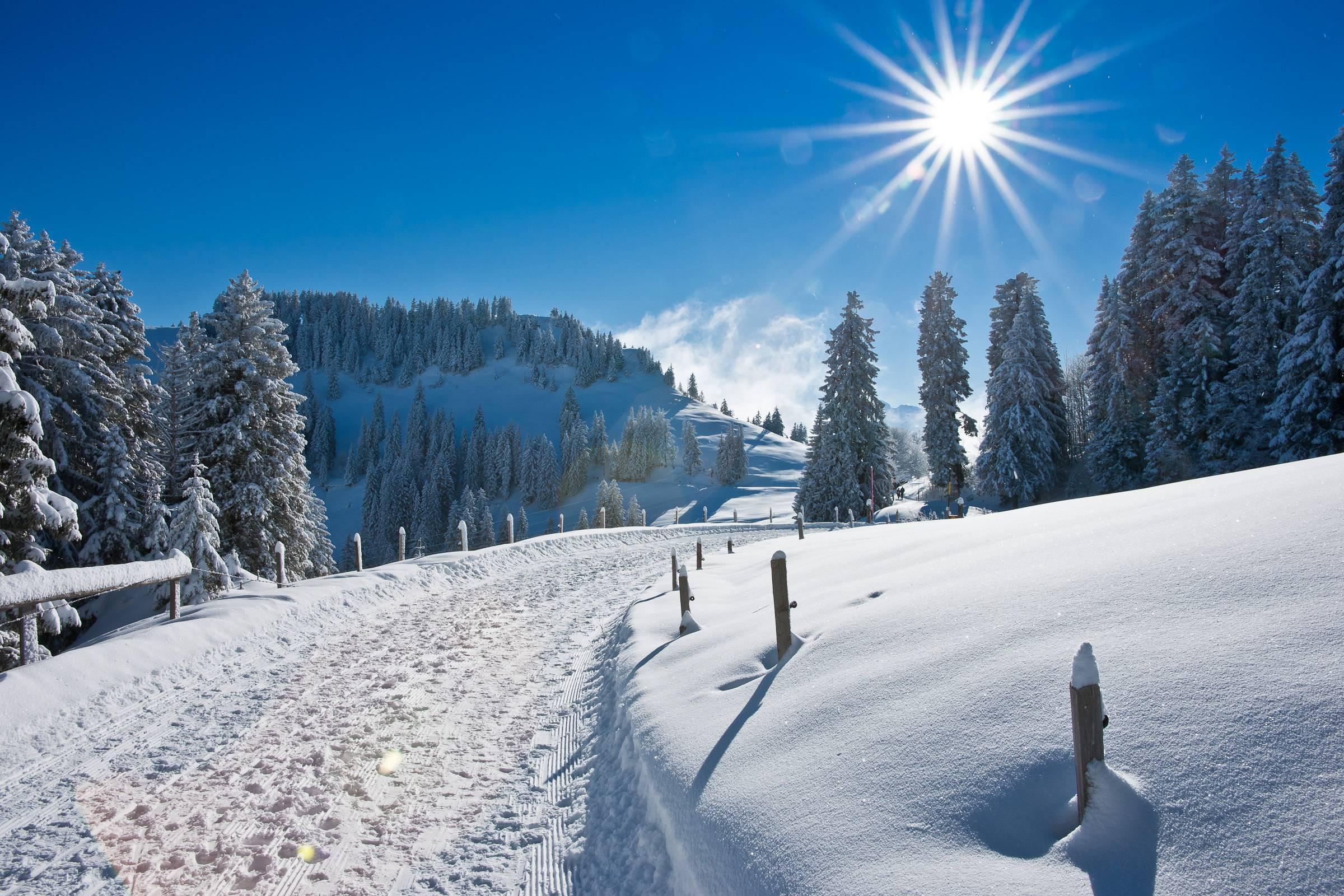 Winter HD Background