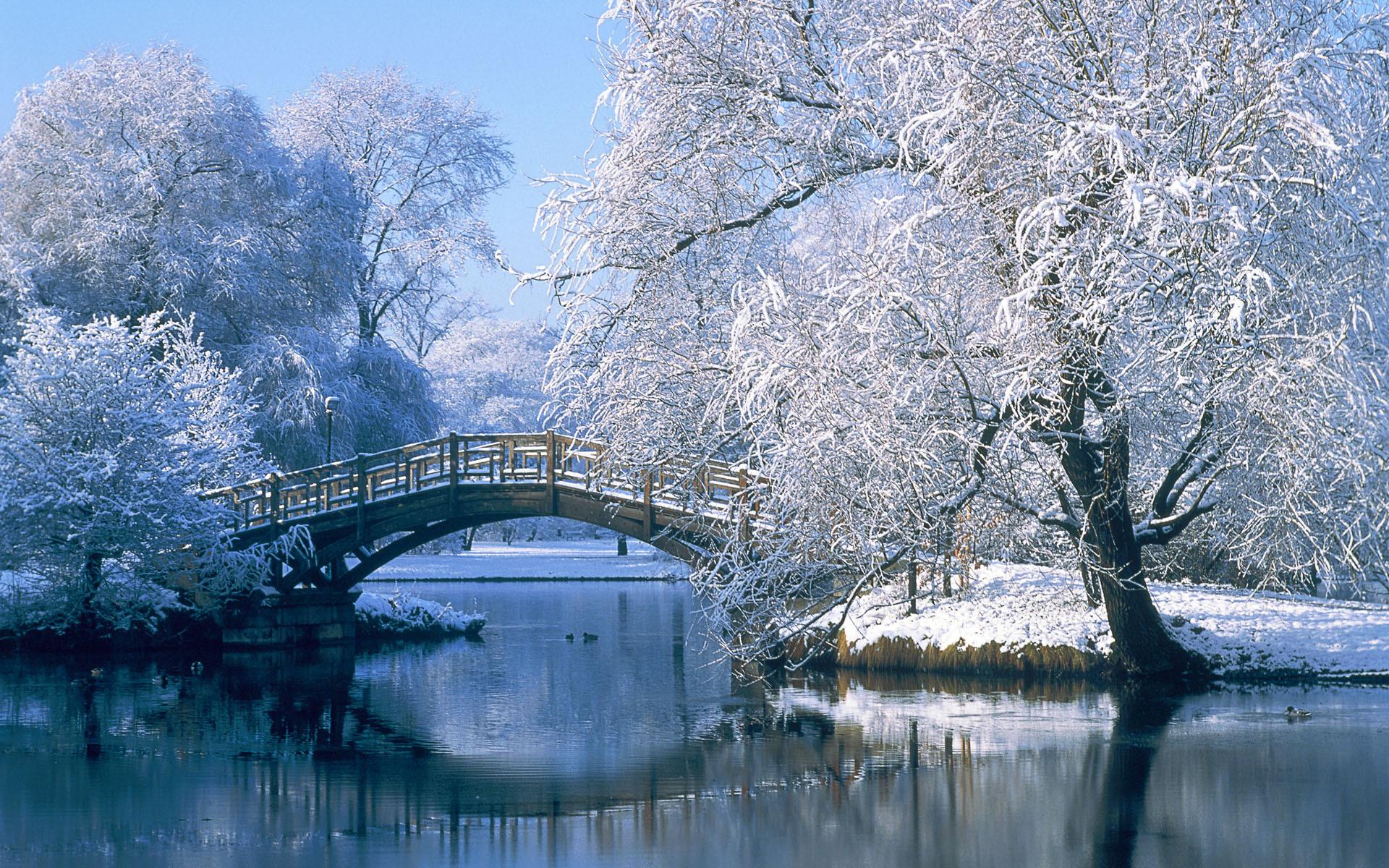 Winter Widescreen