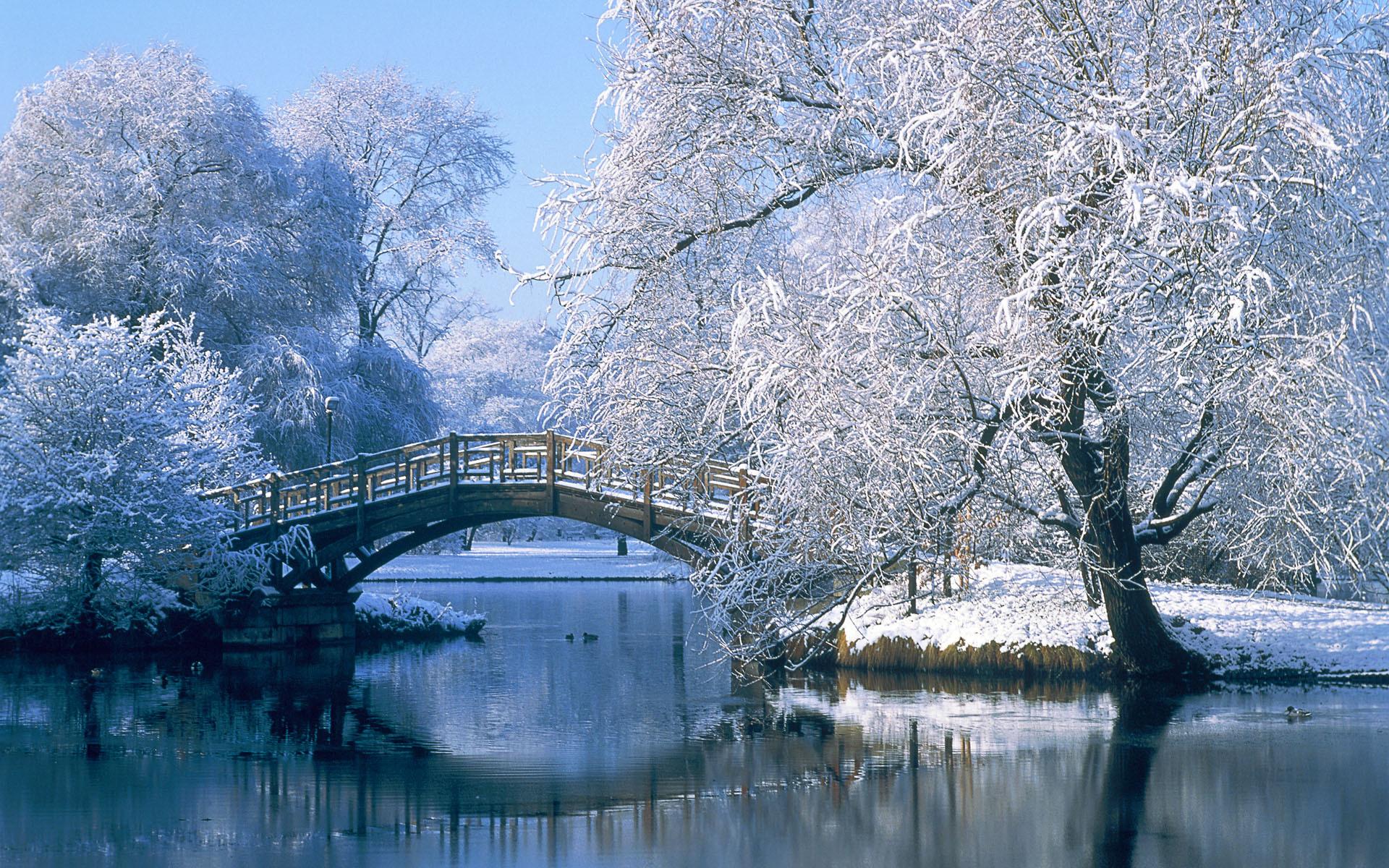Winter For Deskto