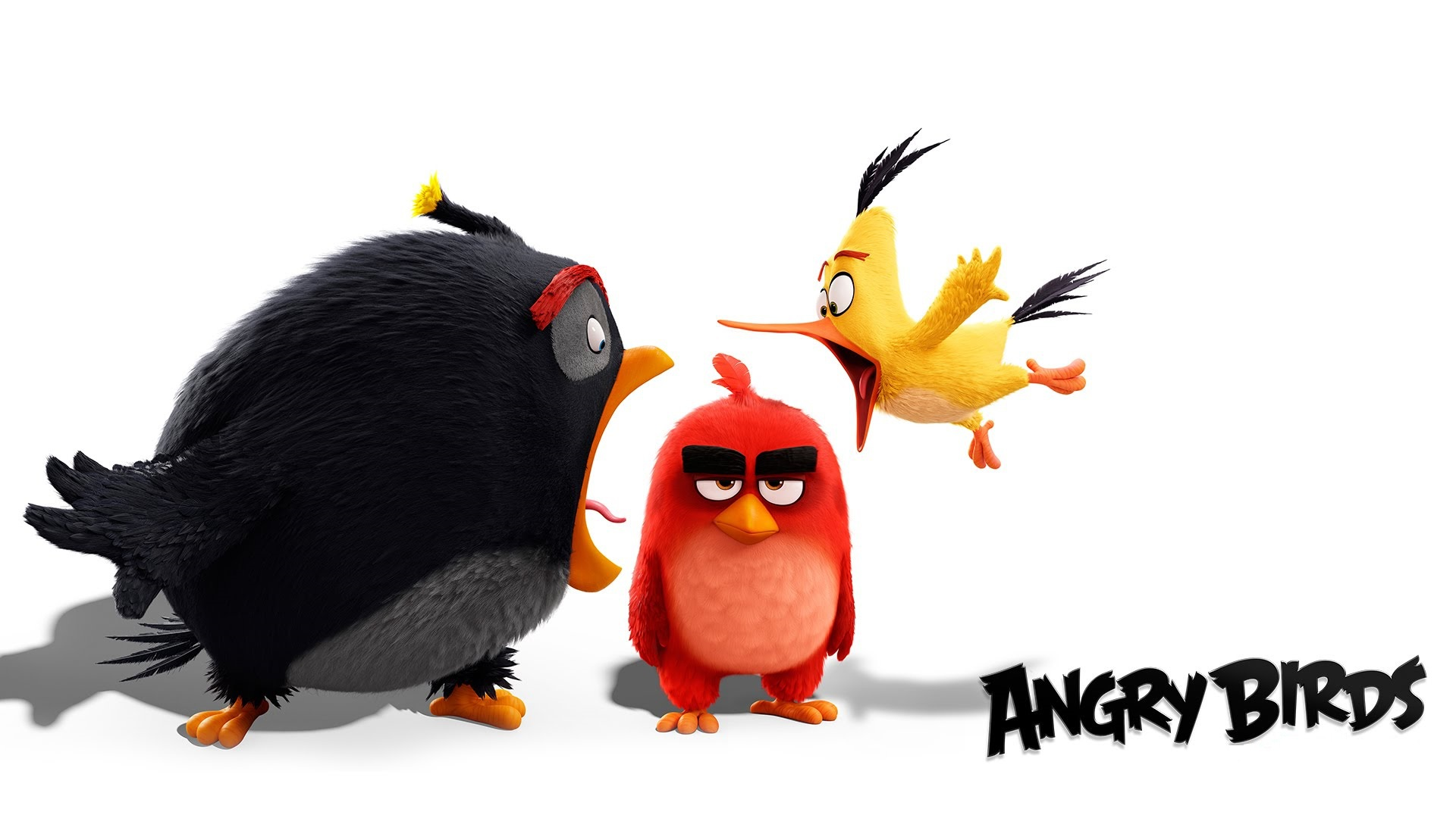 angry birds hd images | newwallpapers