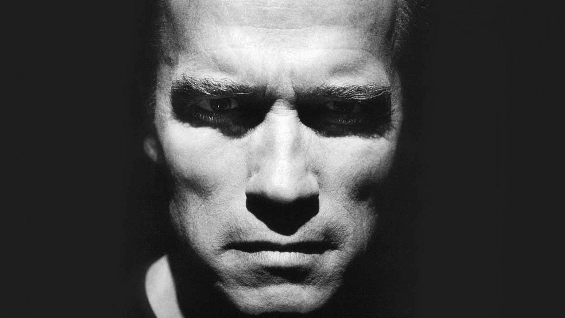 Arnold Schwarzenegger Hd Desktop