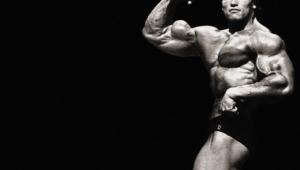 Arnold Schwarzenegger Wallpapers Hd