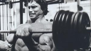 Arnold Schwarzenegger For Desktop