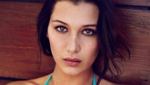 Bella Hadid Widescreen