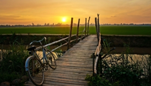 Bicycle Hd Wallpaper