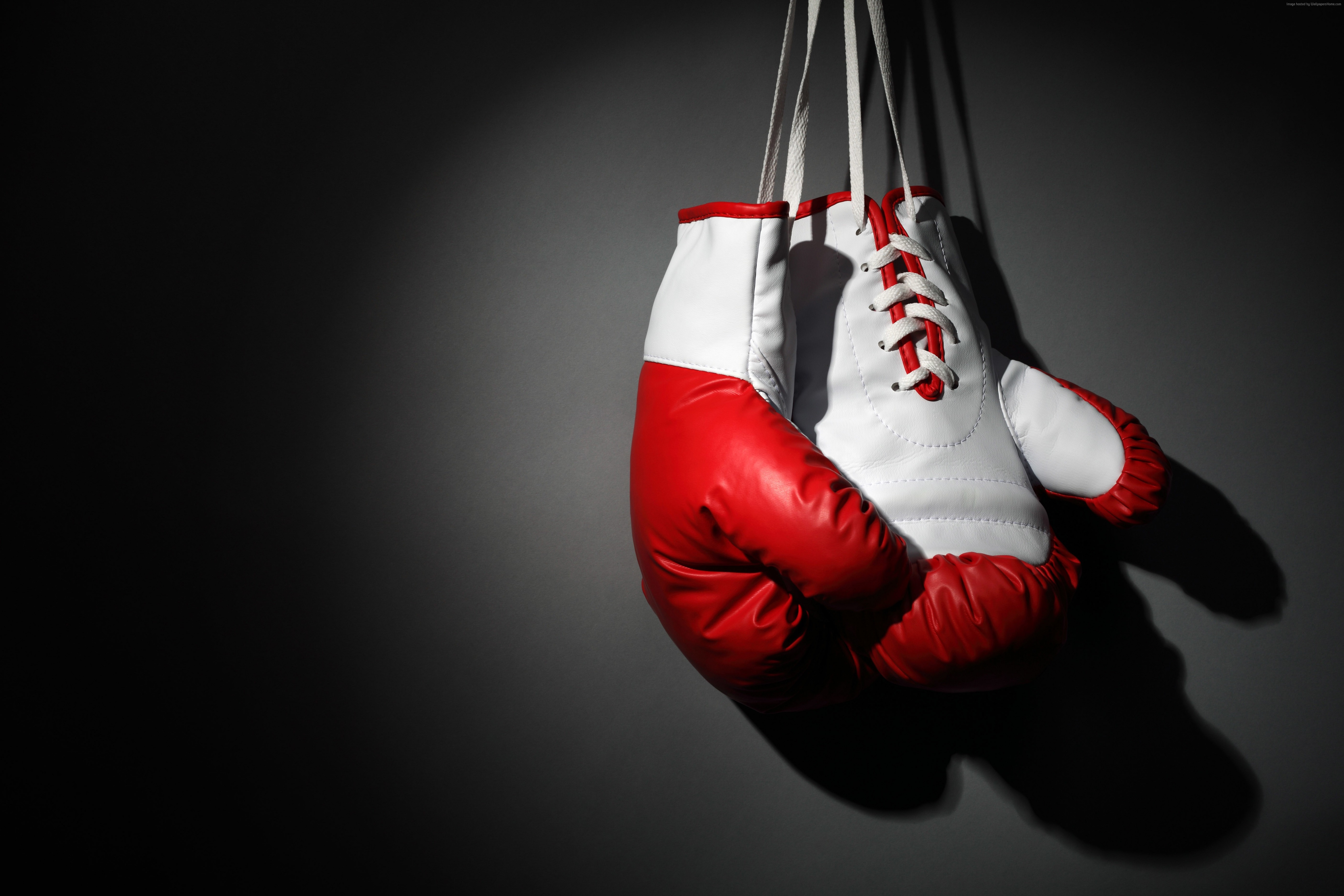 Boxing Gloves Computer Wallpaper