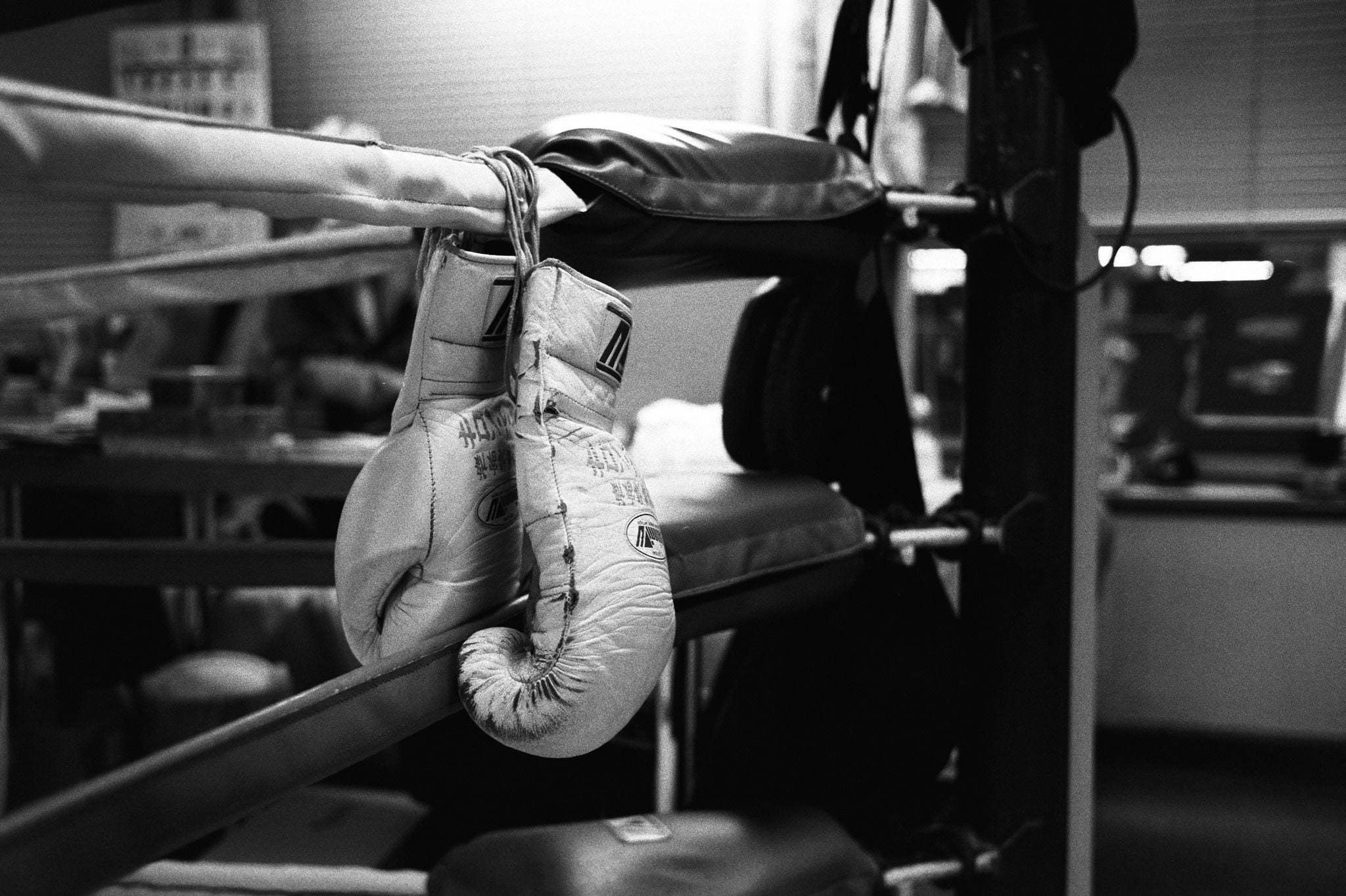 Boxing Gloves High Quality Wallpapers