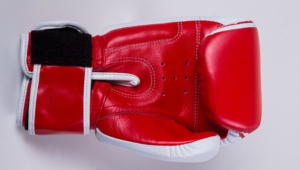 Boxing Gloves For Desktop