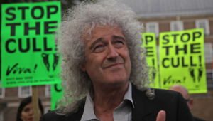 Brian May Wallpapers Hd