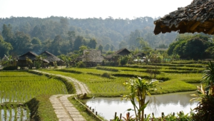 Chiang Mai Wallpapers And Backgrounds