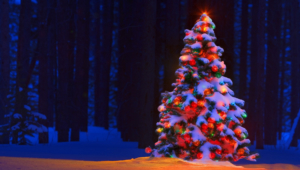 Christmas Tree High Definition Wallpapers