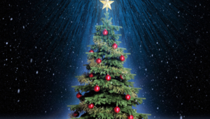 Christmas Tree High Quality Wallpapers
