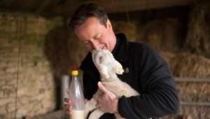 David Cameron For Desktop