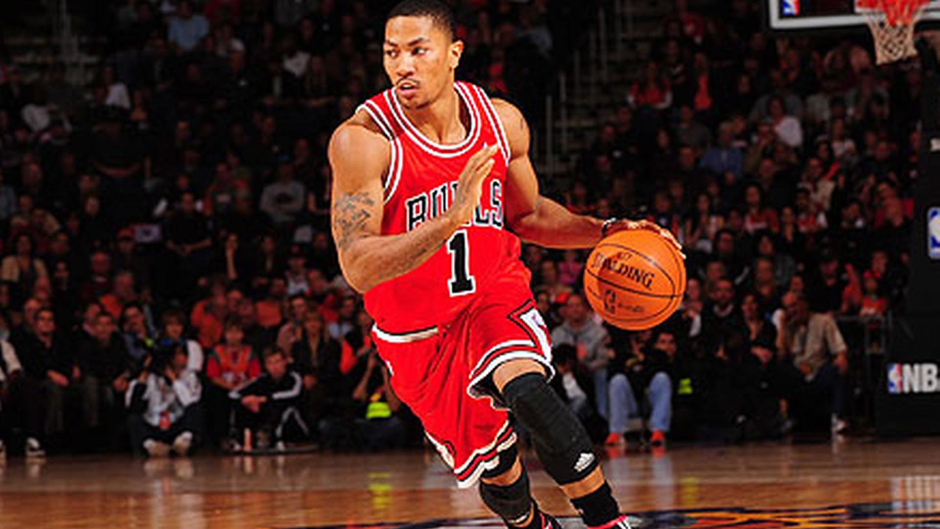 Derrick Rose Background