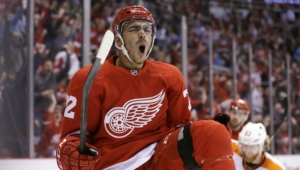 Detroit Red Wings High Quality Wallpapers