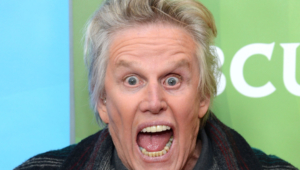 Gary Busey Background