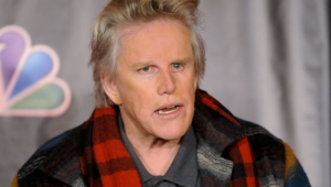 Gary Busey High Definition Wallpapers