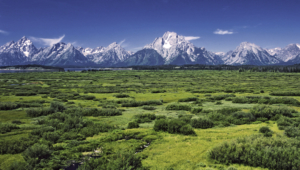 Grand Tetons Wallpapers And Backgrounds