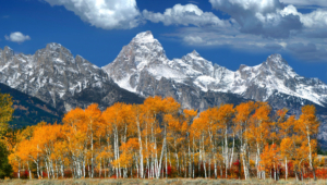 Grand Tetons For Desktop