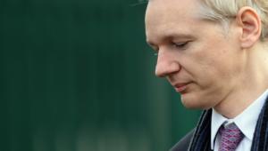 Julian Assange 4k