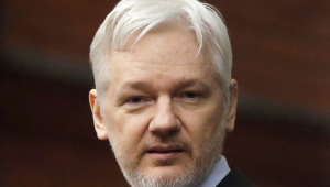Julian Assange Computer Wallpaper