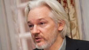 Julian Assange Desktop