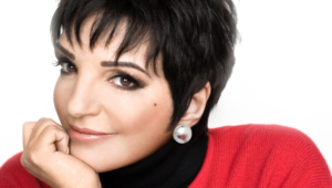 Liza Minnelli Hd Background