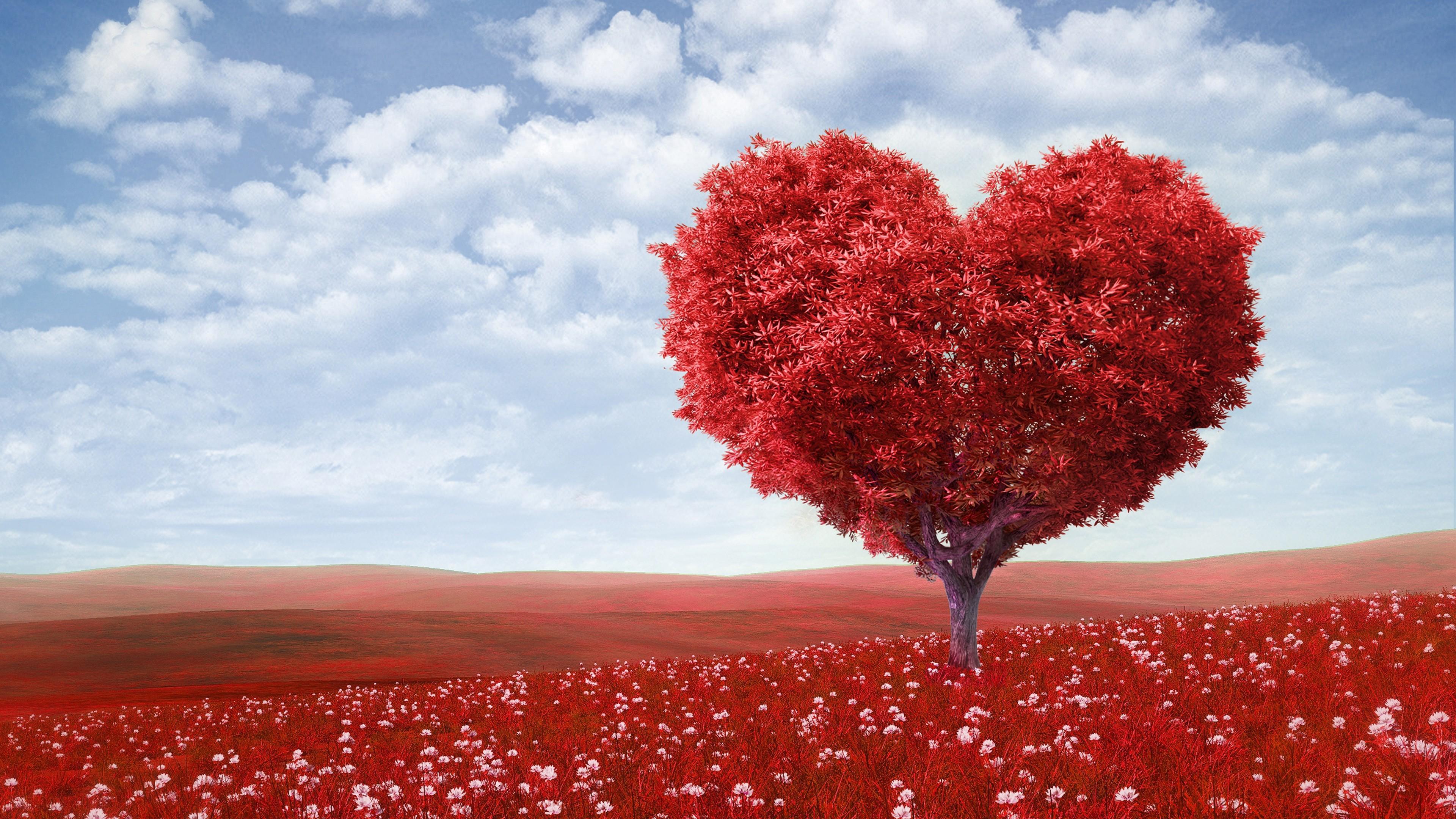 Love Full Hd