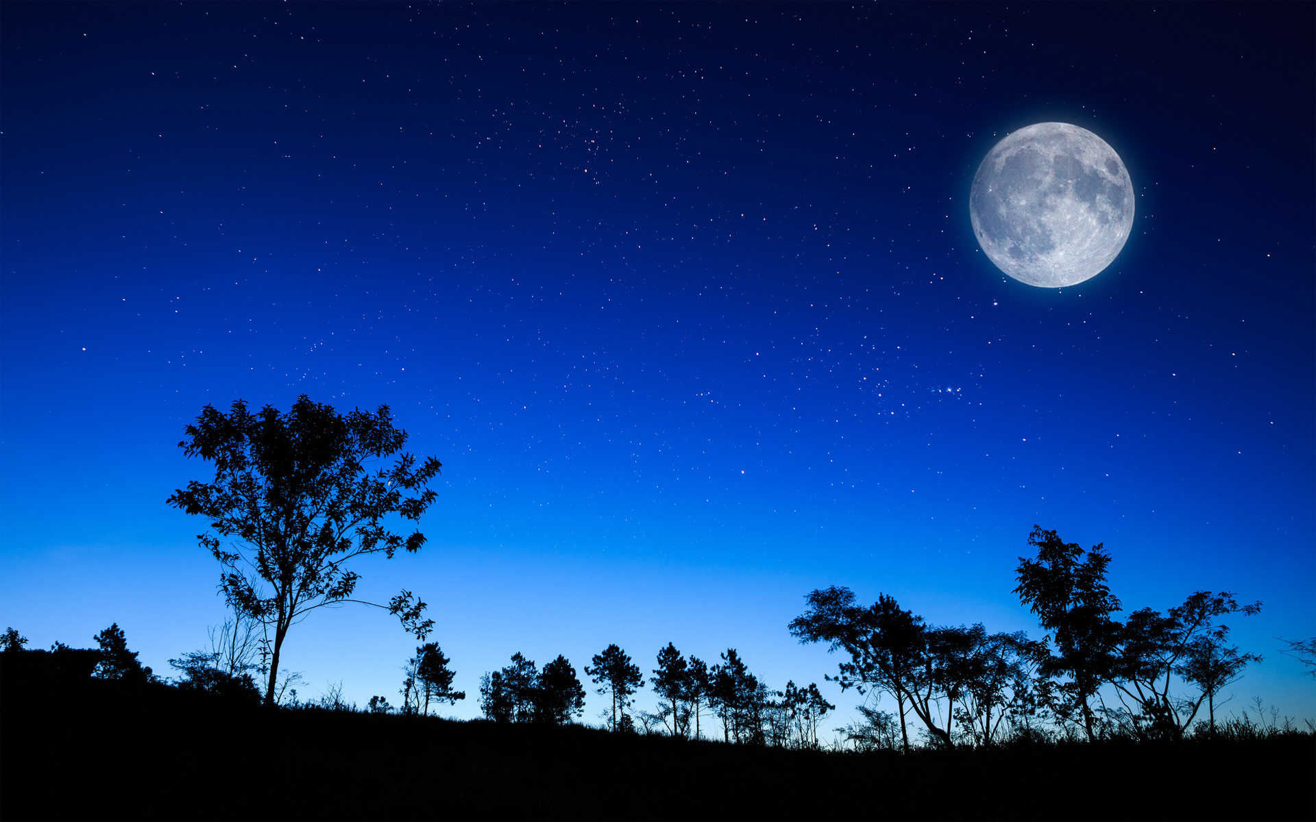 Night Sky Moon Hd Desktop