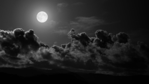Night Sky Moon Hd Wallpaper